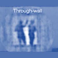 mmW_throughwallblue1